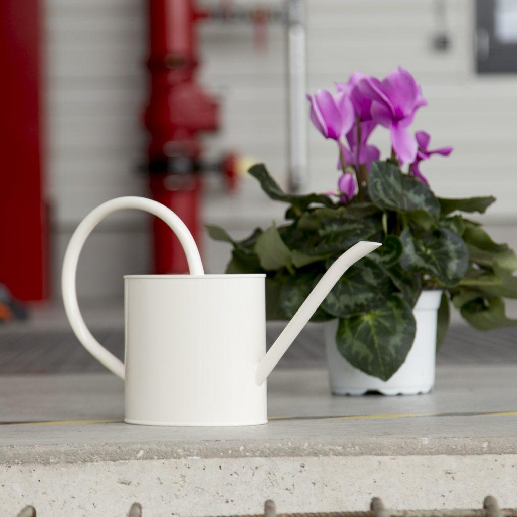 Blumengiesskanne als Symbol für Pflege der Unternehmenskultur und Betriebsklima